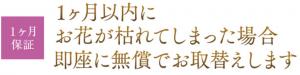 胡蝶蘭品質保証書1